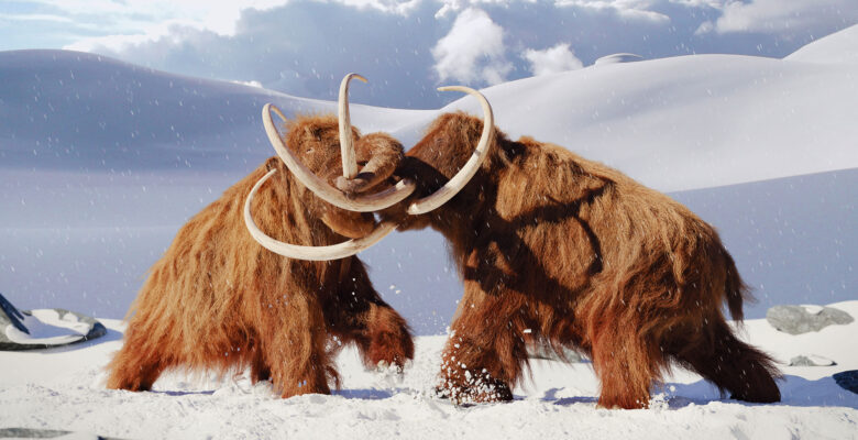 mammoet uitgestorven diersoorten
